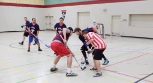 Hockey Cosom 2014